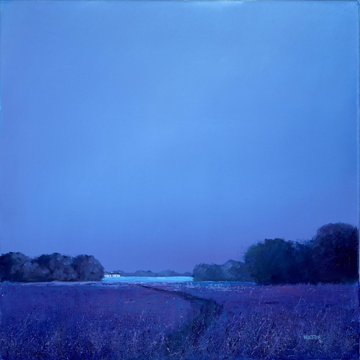 Nighttime Lavenders